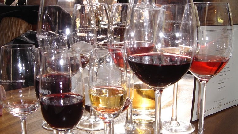harmonizando vinhos