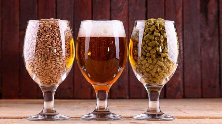 Aprenda a fazer cerveja artesanal em casa